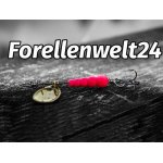 Forellenwelt